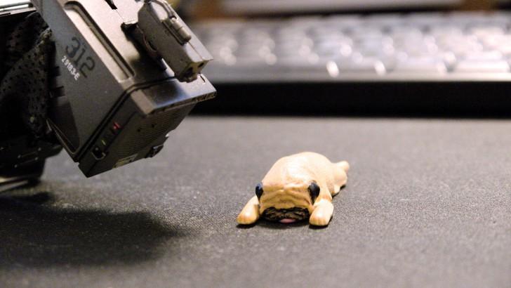 サイバー犬05